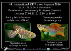 14-0-Copr_2016-KFNt.jpg