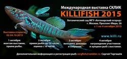 00-0-Copr_2016-Olga_Kevykinat.jpg